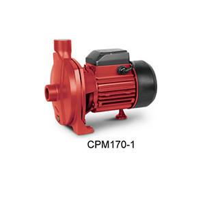 Вихревые насосы Hiflow серии CPM170-1